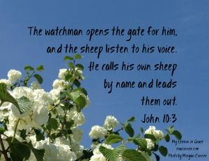 John 10-3